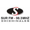 Radio Sur Chichinales